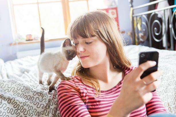 profil-slika-društvene-mreže